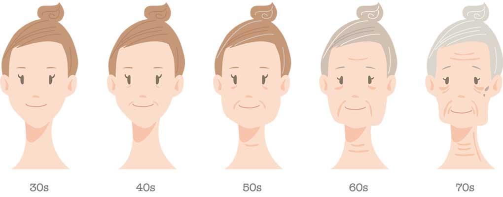 女性の年代